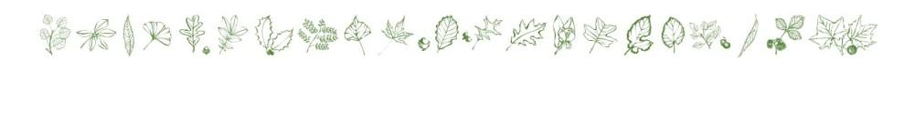 frange hojas